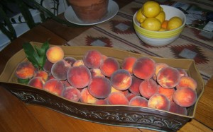 Leander TX Peaches